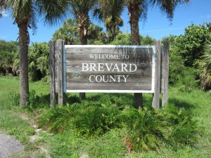brevard county wildlife removal