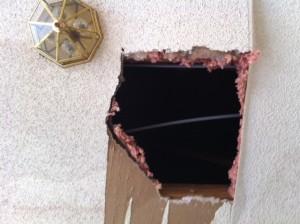 squirrels damage ceiling