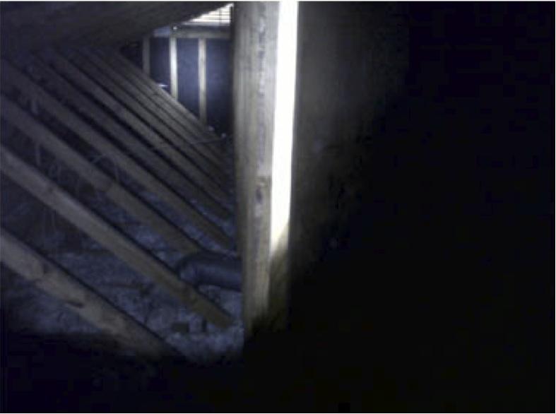 gable-attic-vent-rat-entry